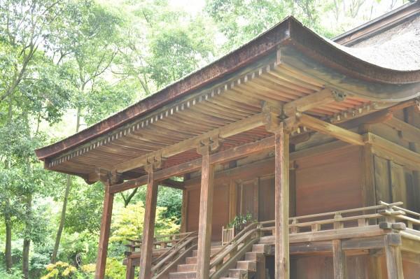 神谷神社本殿 向拝屋根曲線