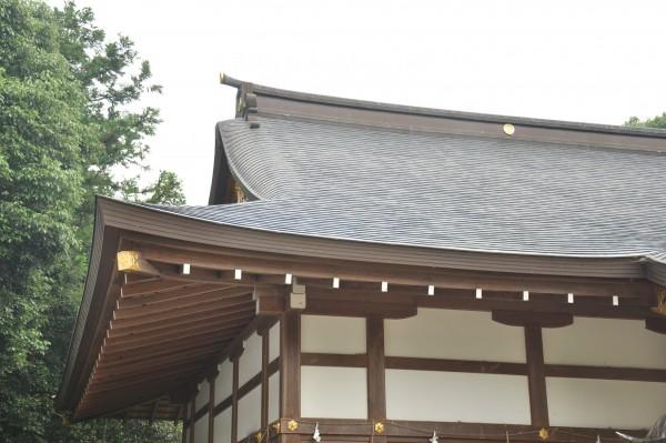 日枝神社拝殿 屋根曲線②